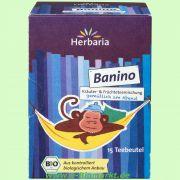Banino Tee (Herbaria)
