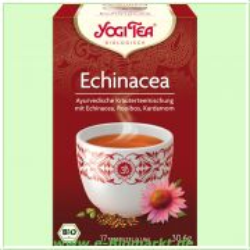 Echinacea Tee (Yogi Tee)