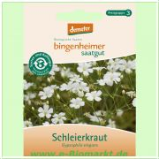Schleierkraut (Bingenheimer Saatgut)
