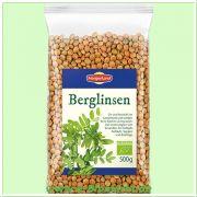 Berglinsen (Morgenland)