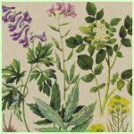 Lunchserviette Botanical pattern (Paper+Design)
